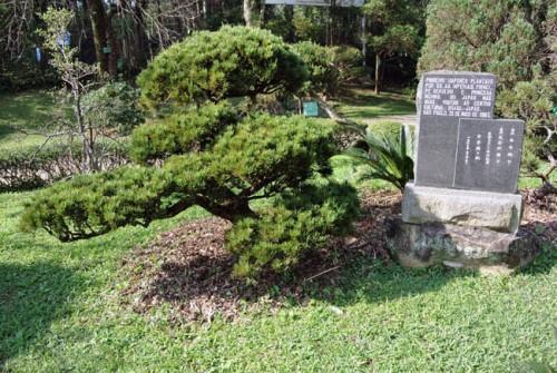 Pavilhao Japones pinheiro
